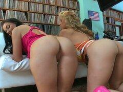 Perras Kinky Sarah Vandella y Ashli Orion demuestran sus asnos y el posterior baño en una piscina al aire libre