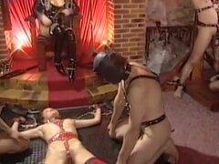 Tania Russof en caliente Follando Orgía desde el Gigolo